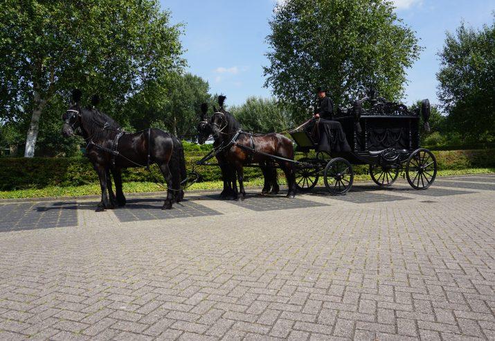 rouwkoets huren met paarden