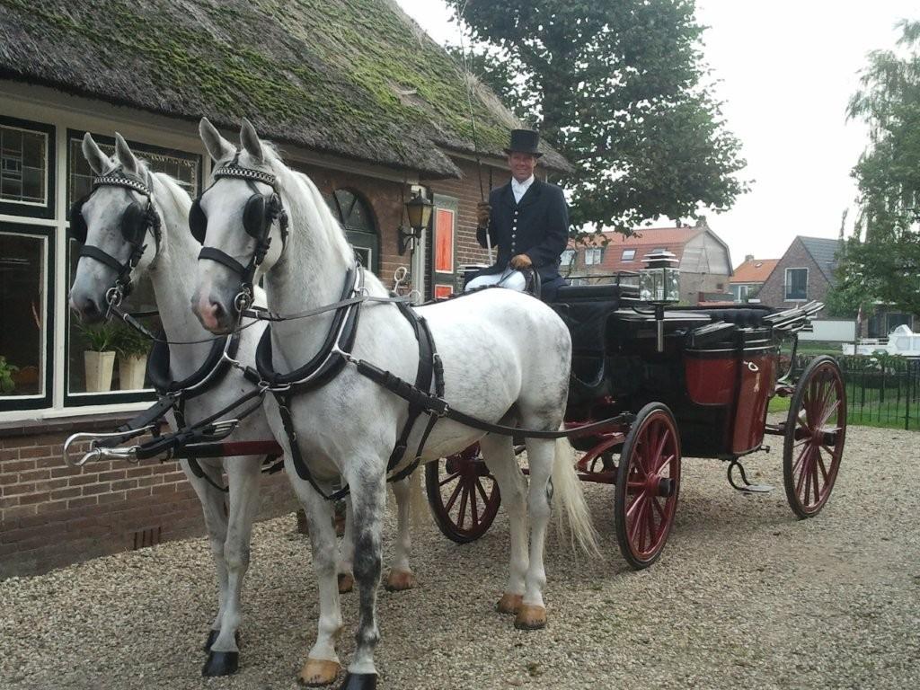 landauer met 2 paarden
