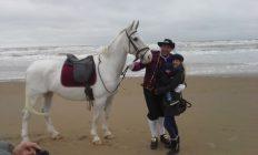 huwelijk aanzoek met paard
