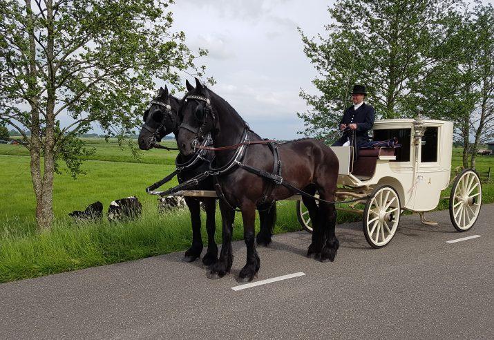 trouwcoupe met 2 Friese paarden