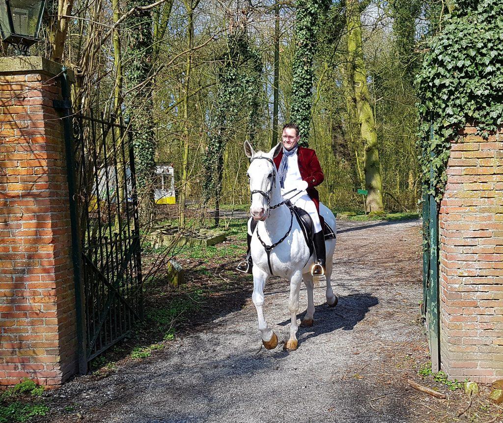 wit paard huren