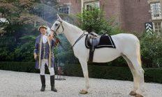 prins op het witte paard huren