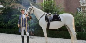 Wit paard voor commercial, evenement of ceremonie