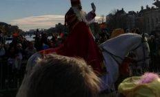 het paard van Sinterklaas huren