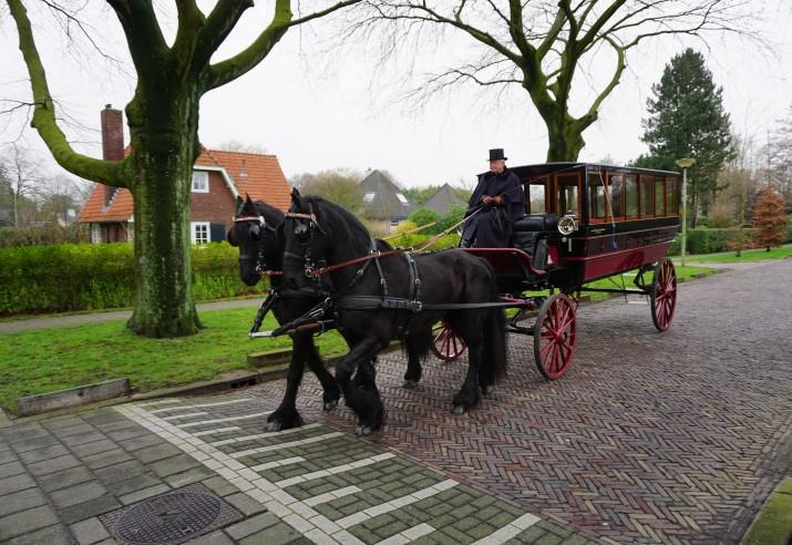 Volgkoets 16 personen met 2 Friese paarden