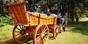 Natuur uitvaart met paarden en boerenwagen