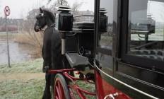 stijlvol vervoer per koets
