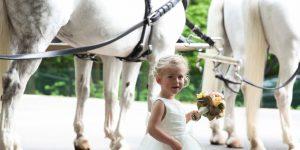 Trouwkoets huren op of tijdens uw bruiloft ?