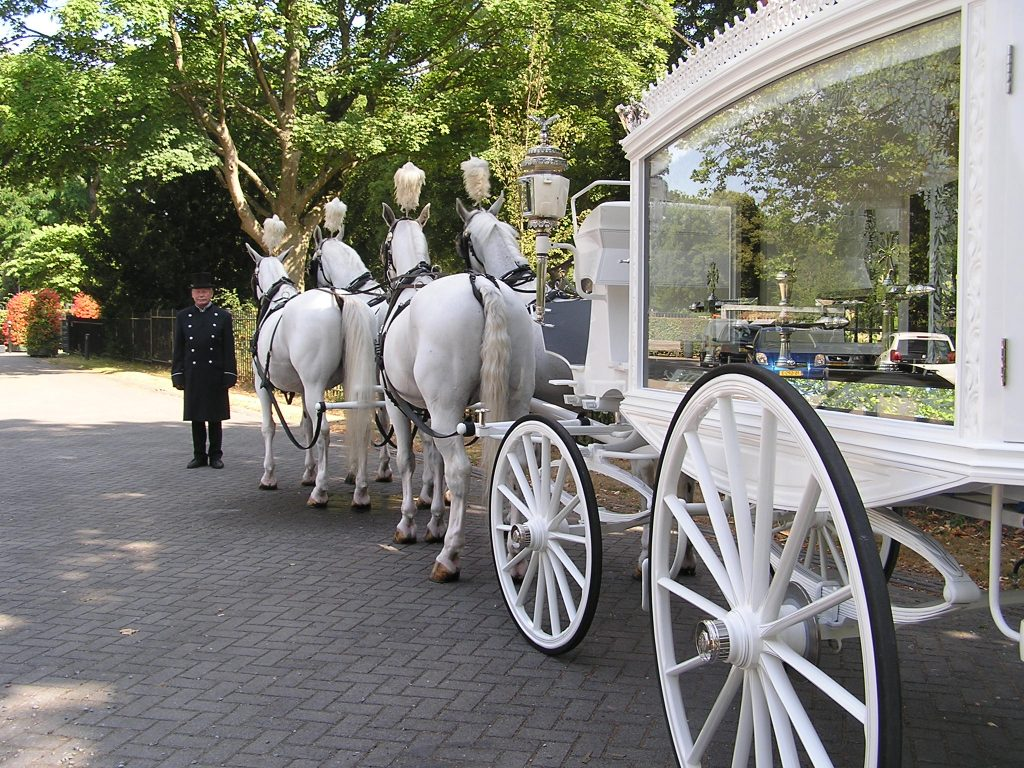 witte rouwkoets met witte paarden huren