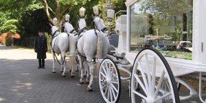 Met gepaste trots presenteer ik onze nieuwe witte rouwkoets met witte paarden.